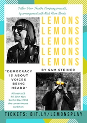 LEMON FLYER (2)