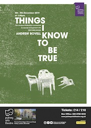 Things I Know To Be True poster